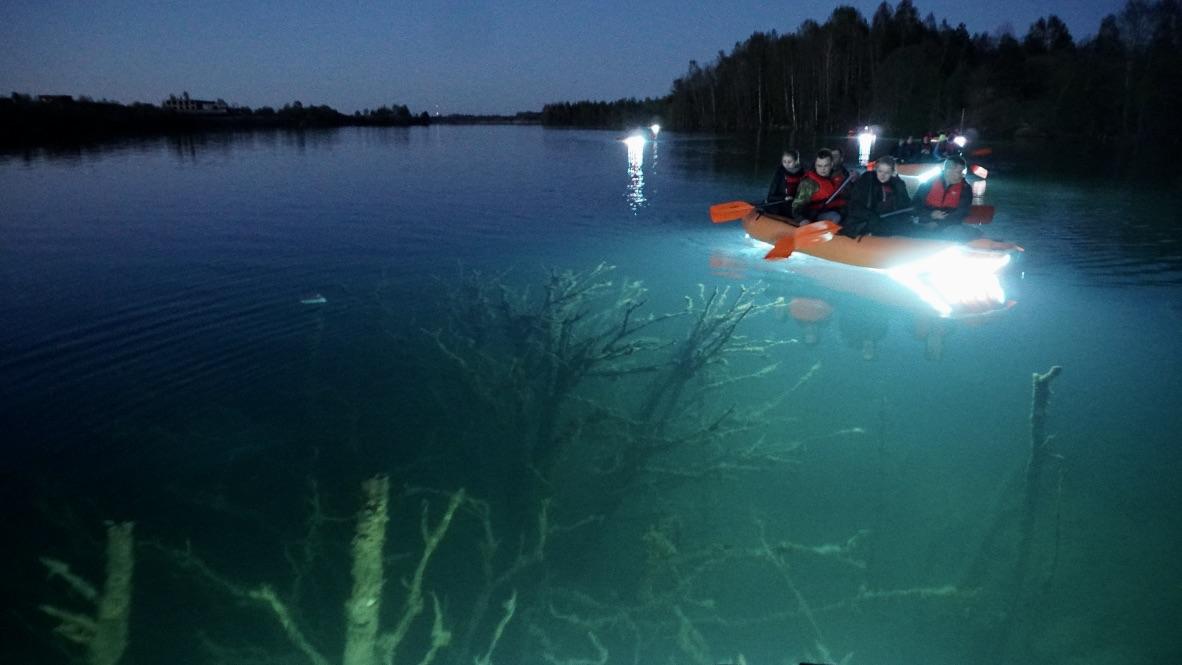 Valgusparv Veealuse Metsa Kohal Rummu