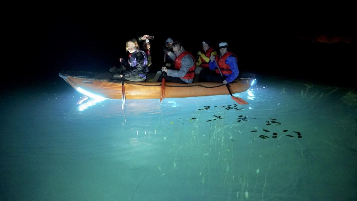 Valgusparve Matkajad Veealust Maastikku Uurimas