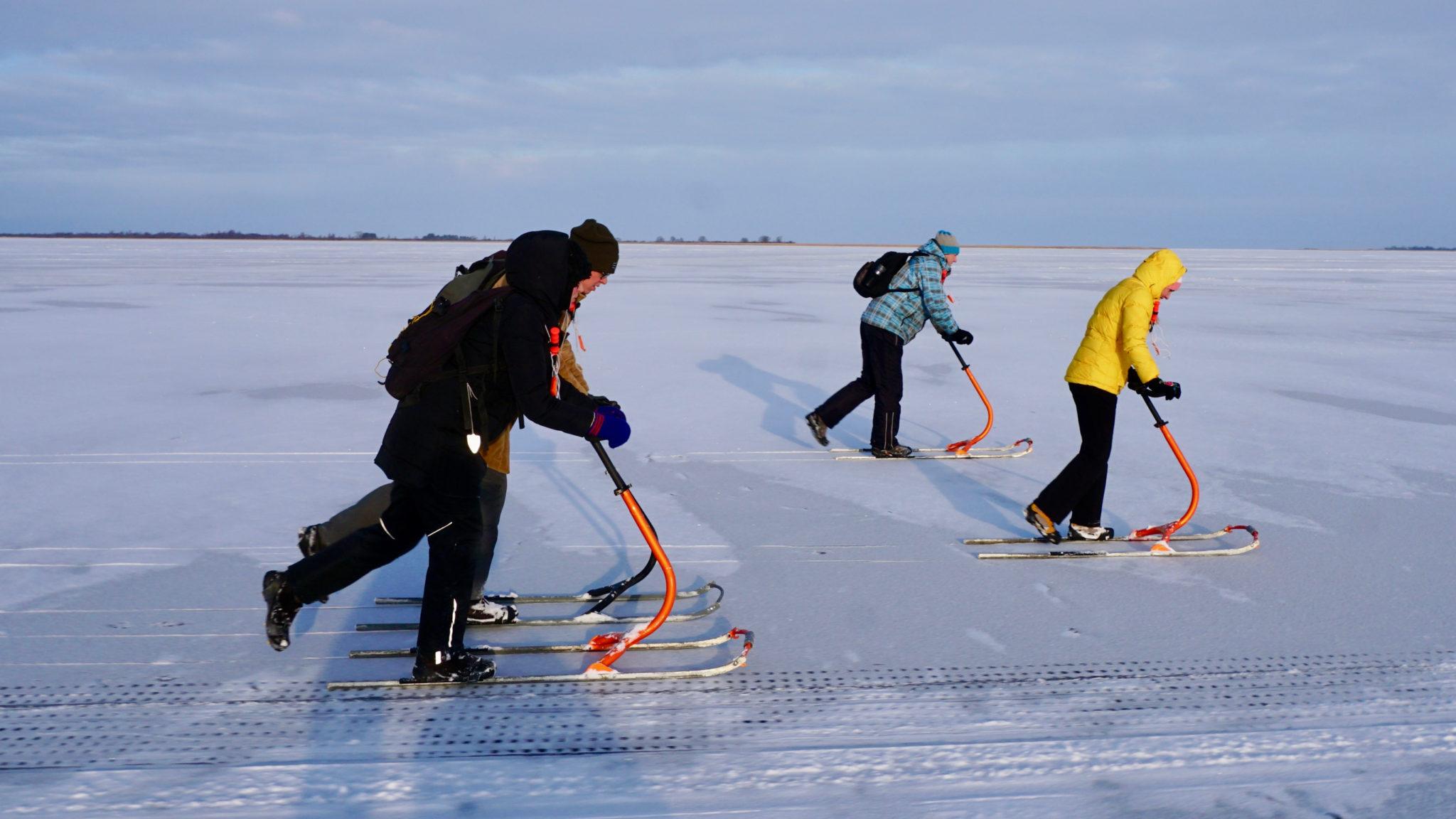 Soome kelkudel järve jääd pidi tõugates